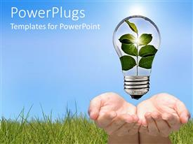 PowerPlugs: PowerPoint template with two hands holding a light bulb with stem of leaves growin inside of it go green