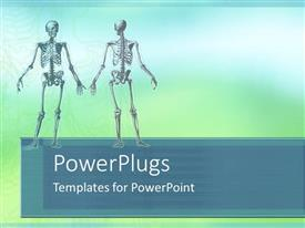 PowerPlugs: PowerPoint template with two human skeleton close ups standing in blue background
