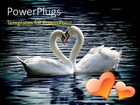 PowerPlugs: PowerPoint template with two lovely swans in river forming love shape