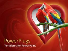 PowerPlugs: PowerPoint template with two parrots kissing in heart shape, red swirl background, love