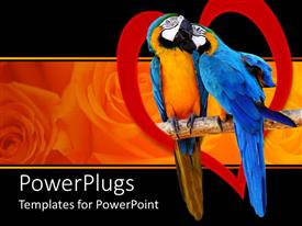 PowerPlugs: PowerPoint template with two parrots perched with red heart, rose background, love, romance