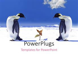 PowerPlugs: PowerPoint template with two penguins looking at a growing plant in snow