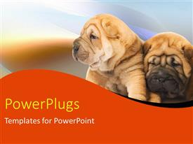 PowerPlugs: PowerPoint template with two puppies leaning against each other on blurry background