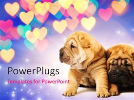 PowerPlugs: PowerPoint template with two shar-pei puppies in love with beautiful colored heart shapes