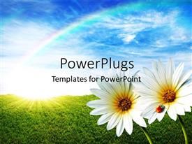 PowerPoint template displaying two white flowers with a beetle on one of them