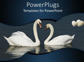 PowerPlugs: PowerPoint template with two white swans on water with hearts, romance, love