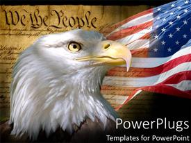 PowerPoint template displaying united states constitution as a metaphor of patriotism for american flag with california bald eagle