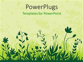 PowerPlugs: PowerPoint template with vector illustration of flowers in green