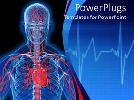 PowerPlugs: PowerPoint template with visualization of human anatomy in blue with heart and veins in red
