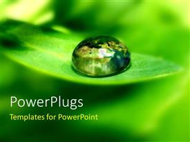 PowerPoint template displaying a water droplet on the green leaf with blur background