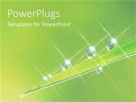 PowerPlugs: PowerPoint template with water rain dew drops on leaf green plants garden nature