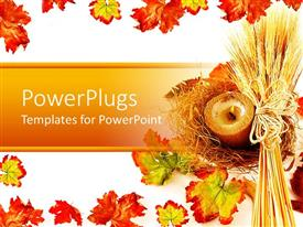PowerPlugs: PowerPoint template with white background with wheat strands and autumn leaves as border