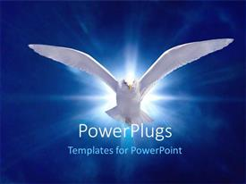 PowerPoint template displaying white bird in flight on bright blue background