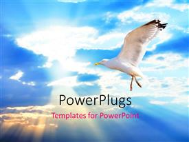 PowerPlugs: PowerPoint template with white bird soaring high in cloudy sky