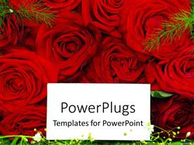 PowerPlugs: PowerPoint template with white card on red roses laying in green field