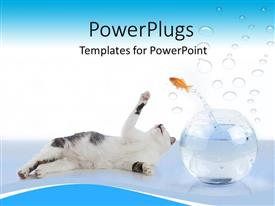PowerPoint template displaying white cat lying down and a gold fish jumping over it
