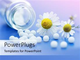 PowerPoint template displaying white medications from transparent bottle with Chamomile flower on blue surface