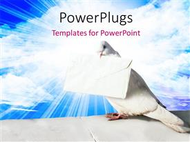 PowerPoint template displaying white pigeon holding letter of peace with blue sky