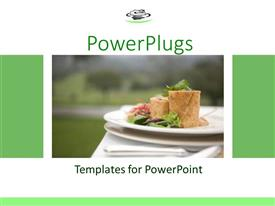 PowerPoint template displaying white plate of greens and tortilla wrap