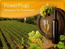 PowerPlugs: PowerPoint template with wine placed on table with old wine barrel on the background of vineyard and sunset