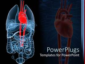 PowerPlugs: PowerPoint template with x-ray depiction of human anatomy with red heart, lungs and intestines