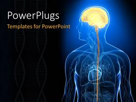 PowerPlugs: PowerPoint template with x-ray depiction of human head with highlighted brain