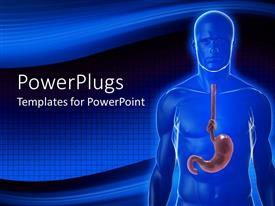 PowerPlugs: PowerPoint template with x-ray of man showing stomach with knot on gullet