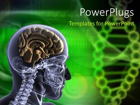 PowerPlugs: PowerPoint template with x-ray scan of human head and neck showing brain and neck bone