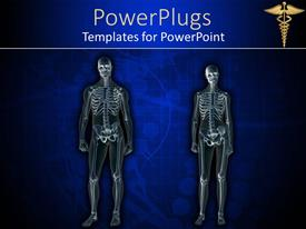 PowerPoint template displaying x-rayed anatomy of the human body for female body and male body with medical sign in the top corner on dark blue background