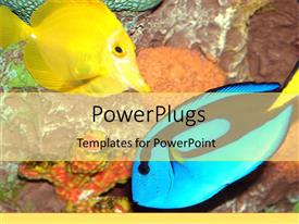 PowerPoint template displaying yellow and blue colored fish swim at sea bed