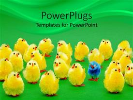 PowerPlugs: PowerPoint template with yellow chicks with one distinct blue chick on green background