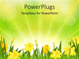 PowerPlugs: PowerPoint template with yellow floers and green grass over yellow and green background depicting nature