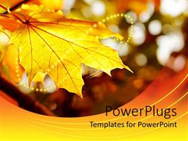 PowerPlugs: PowerPoint template with yellow maple leaf with autumn colored background and string of yellow lights