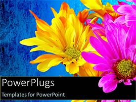 PowerPlugs: PowerPoint template with yellow pink flowers blue background bouquet celebration spring colors