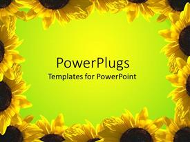 PowerPlugs: PowerPoint template with yellow sunflower frame around green background,