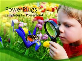 PowerPlugs: PowerPoint template with young boy looking at beautiful flower through magnifying glass