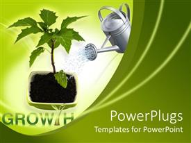 PowerPlugs: PowerPoint template with young tree in pot with watering can, green background, growth
