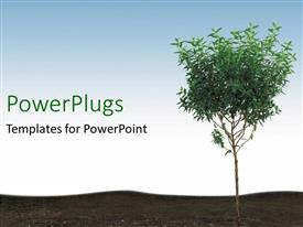 PowerPlugs: PowerPoint template with young tree in soil, blue sky